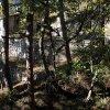 On contourne la première maison forestière, en très bon état