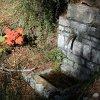 Fontaine au robinet fermé au-dessus de la maison forestière