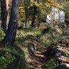 Le sentier est aménagé de murets à l\'approche de la deuxième maison forestière