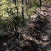 Au premier plan, une cunelle après entretien (évacuation des débris végétaux)