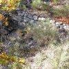 Muret séculaire au bas du parcours
